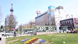 北海道札幌市の大通公園で「春の花壇」の写真