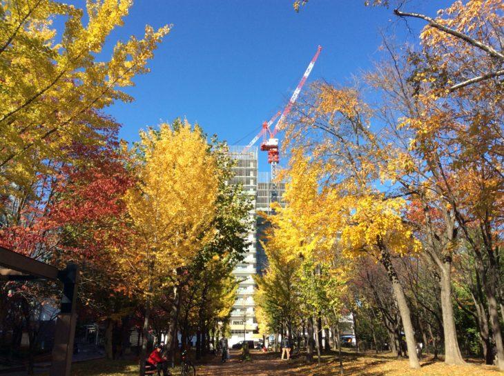 札幌再開発2019年の目玉・北4東6のタワーズフロンティア&体育館の様子