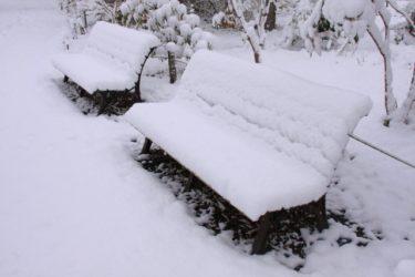 札幌で雪が多い区はどこか?過去の積雪量と雪の悪影響を避ける方法!